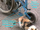 Нажмите на изображение для увеличения Название: Ashampoo_Snap_2014.04.14_21h57m53s_019_.jpg Просмотров: 389 Размер:249,8 Кб ID:30814